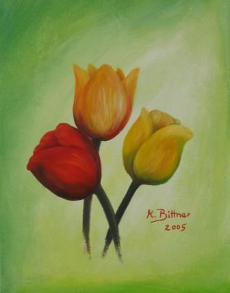 Drei Tulpen